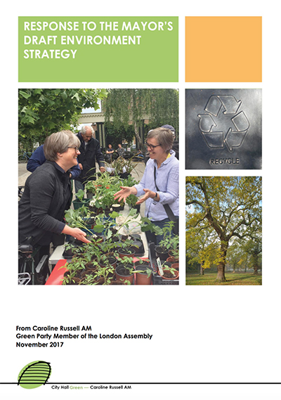 Environment Strategy cover
